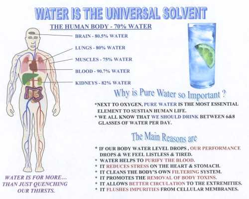 Water - The universal solvent